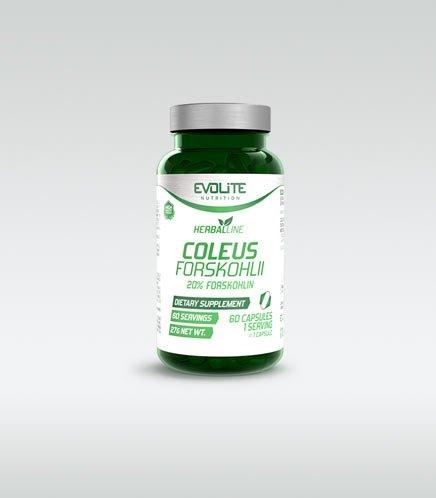 Evolite Coleus Forskohlii 60 caps